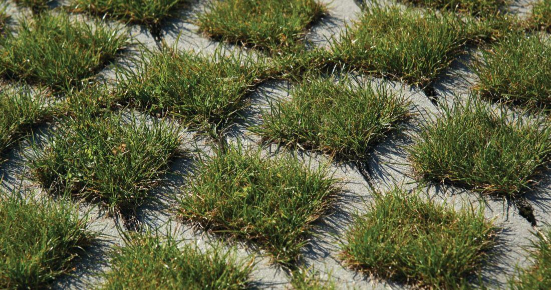 pozbruk płyty ażurowe ekologiczne